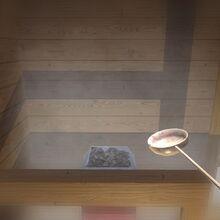 Sauna instruction steam
