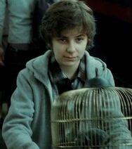 01.James Sirius Potter - 17 Años