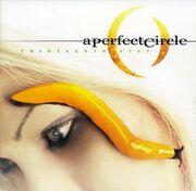 A Perfect Circle-Thirteenth Step