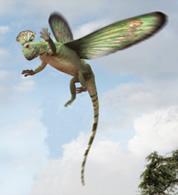 File:Rex1.jpg