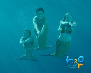 Swimming1