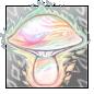 Ephemeral Light Mushroom.1462935992