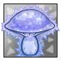 Polaris Bear Mushroom.1482530739