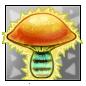 Blue Banded Bee Mushroom