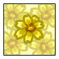 File:Sunny Aster.png