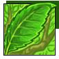 File:Leaf Hat.png