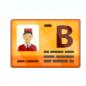 Electric B-License