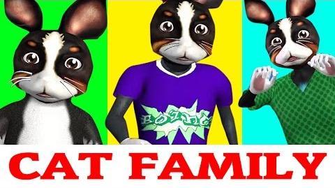 Cat Finger Family Rhymes