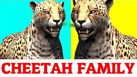 Finger Family Cheetah Cartoon for kids,Nursery Rhymes songs for children