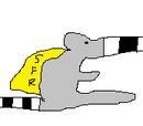 Super Flying Raccoon