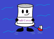 1983 salt cover updated