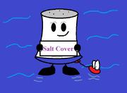 1983 salt cover