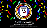 2007 salt cover updated version 2