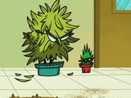 Plant School Staff