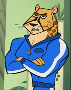 Mr. Cheetah