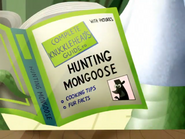Complete Knucklehead's Guide to Hunting Mongoose