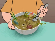 Adam's Bowl of Bug Stew