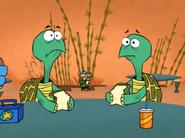 Two Turtles Sense Danger