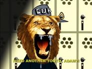 Live Action Pride Lion