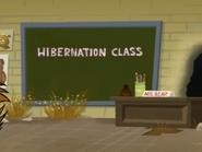 Hibernation Class Board