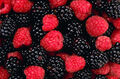 Berry mix.jpg