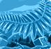 Prehistfernblue