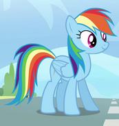 Rainbow Dash Pegase