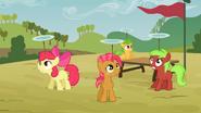 Apple Bloom et Babs Seed à la course d'obstacles S3E08