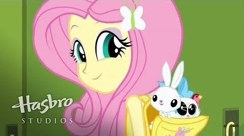 My Little Pony Equestria filles - Rencontrez Fluttershy