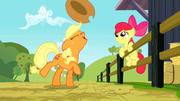 Applejack fait tourner son chapeau sur son museau S2E14