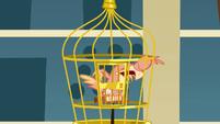Philamena dans sa cage S01E22
