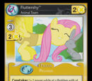 Fluttershy, Animal Team