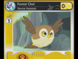 Forest Owl, Novice Assistant