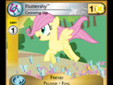 Fluttershy, Growing Up