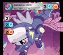 Rainbow Dash, One Winged Warrior