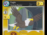 Eagle, Soaring Raptor