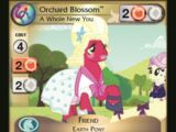 Orchard Blossom, A Whole New You
