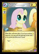 Fluttershy, Kind Pony