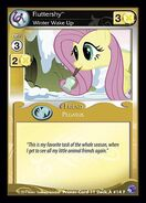 Fluttershy, Winter Wake Up
