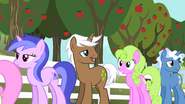 1000px-Daisy and Sea Swirl waiting in line s02e15