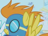 Lista dei pony/Pegasus Pony