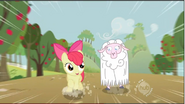 Apple bloom sheep