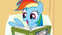 Rainbow Dash enjoys reading