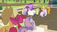 S2E05 Applejack, Apple Bloom and Sweetie Belle watching pigs