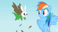Rainbow Dash seeing Owloysius-Angel-Gummy S2E7