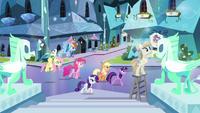 Mane six walking through crystal city S03E12