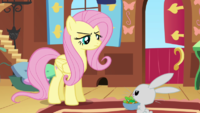 Fluttershy not amused S2E19
