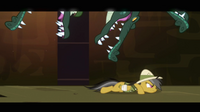 Daring Do avoids alligator trap