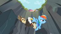 Rainbow Dash - Starting Line (1)