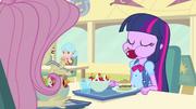Eats like a pony